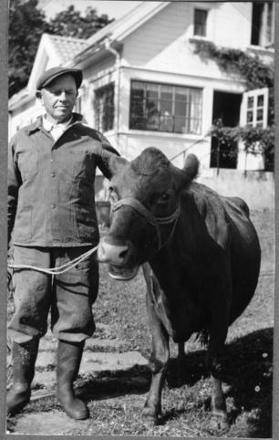 Christian og kua.
