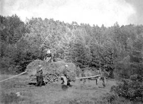 Pål Vallesverd fremst. Høyonn ved Urdalen i 1897.