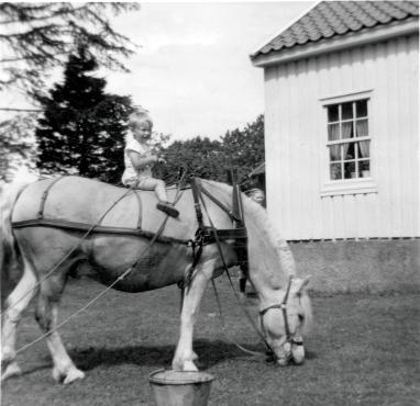 Berit Helene høyt til hest 1955-56