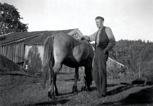 Jonas og hesten