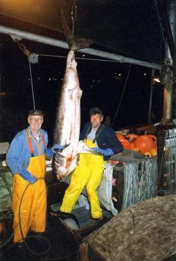 En vellykket fangst