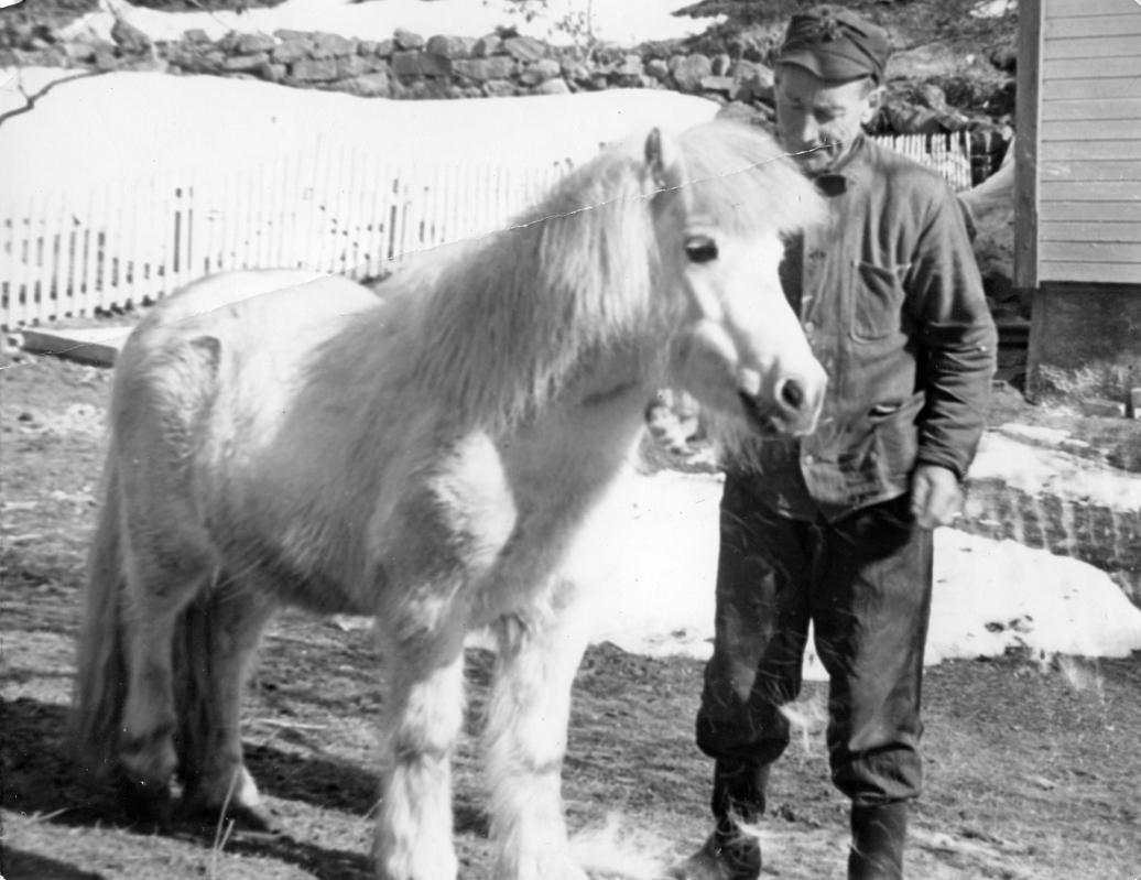 Johan og ponnyen